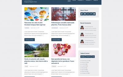 Free WordPress Theme: Occasio