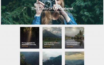 Free WordPress Theme: Image Gridly