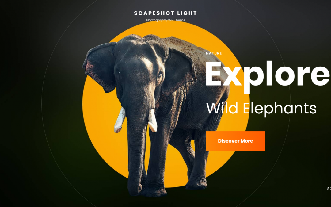 Free WordPress Theme: ScapeShot Light